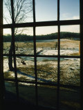 View Looking out Through a Window at a Horseback Rider
