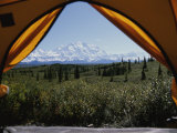 Tent Flaps Open to a Breathtaking View of Mt Mckinley