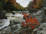 A Creek Rushes Past Autumn-Colored Trees