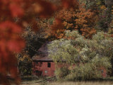 Blazing Autumn Color Surrounds a Barn