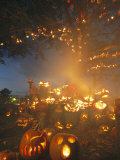 Grinning Lit Jack-O-Lanterns Surrounding and Filling a Tree