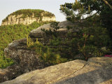 View of the Pinnacle of Pilot Mountain from the Sassafras Trail