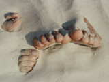 Two Pairs of Feet Push up Through the Sand
