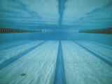 A Below-The-Surface View of a Swimming Pool