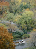 Aerial View of a Horse-Drawn Carriage in Central Park
