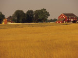 Historic Farm Buildings on the Site of Picketts Charge