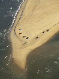 Aerial View of Cars on the Coast of the Outer Banks