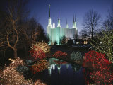 Colored Lights Decorate Bushes on the Mormon Temple Grounds