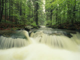 Waterfall Time Exposure  Bayerischer Wald National Park  Germany