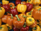 Red  Orange and Yellow Bell Peppers on Display in a Venice Market