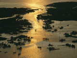 Aerial Shot  Tangier Island  Chesapeake Bay  Virginia