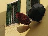Three Umbrellas Hang Outside a Window