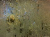 Condensation on a Window Pane Abstracts Outside Autumn Foliage Colors