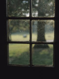 A Museum Window at Fort Frederick