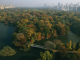 Aerial View of Central Park and the Manhattan Skyline in the Fall