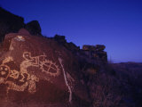 Ancient Rock Art Showing Kokopelli  the Flute Player  and a Shield