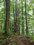 A Woman Rides a Mountain Bike on Props Run  a Single Track Trail