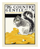 Squirrel with Corn  c1922