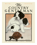 Puppies and the Turtle  c1916