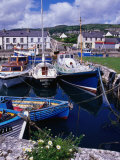 Fishing Boats Docked in Carnlough Harbour  Antrim  Northern Ireland
