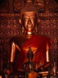 Small Buddha Statues in Wat Xieng Thong  Luang Prabang  Laos