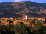 Village of Tinerhir on Banks of River Todra  Todra Gorge  Morocco