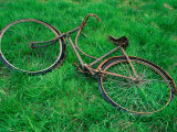 Bicycle Abandoned in a Field County Wexford  Leinster  Ireland