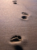 Footprints in the Sand of Eco Beach  South of Broome  Broome  Australia