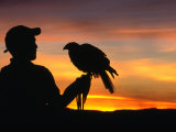 Man Holding a Falcon at Sunset  Perquin  El Salvador