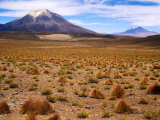 Altiplano Mountains and Scrub  Southwest  Bolivia