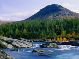 Sjoa River Flowing Past Forest at Foot of Sjolikampen Hill  Norway