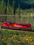 Canadian Pacific Railway Near Vermillion Lakes and Mt Rundle  Banff National Park  Alberta  Canada