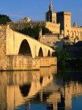 Pont Saint Benezet (Le Pont d' Avignon) on Rhone River  Avignon  France