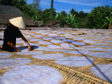 Drying Rice Paper Before Cutting into Noodles  Vietnam