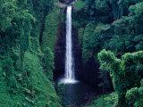 Sopo'Aga Falls Dropping 50M into Gorge  Upolu  Samoa  Upolu