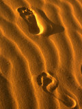 Footprints at Stockton Sand Dunes  Newcastle  New South Wales  Australia