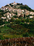 Medieval Hilltop Town Overlooking Vineyards  Motovun  Croatia