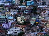 Houses in Las Penas District  Guayaquil  Ecuador
