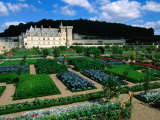 Gardens of Chateau Villandry  France
