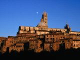 Cathedral and Houses Below the Moon  Siena  Tuscany  Italy