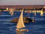 Feluccas on Nile River  Aswan  Egypt