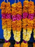 Floral Garland  Tamil Nadu  India