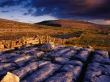 Limestone Landscape of the Burren Near Fanore  Burren  County Clare  Ireland