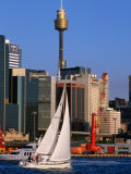 Sailing Around Darling Harbour  Sydney  Australia