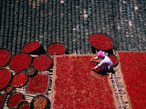 Zhuang Girl Drying Red Peppers on the Roof of Her House  Long Ji  China
