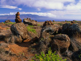 The Garden of the Gods  Lanai  Hawaii  USA