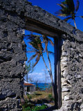 The View from an Abandoned Old Settlement Building by the Shore  Cat Island  Bahamas