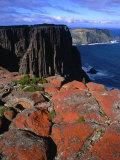 Dolerite Coastal Cliffs of Cape Pillar  Tasman National Park  Tasmania  Australia