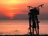 Bicycle Silhouetted Against Sunset on Nha Trang Beach  Nha Trang  Khanh Hoa  Vietnam