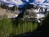 Wheeler Peak and Trees  Great Basin National Park  Nevada  USA